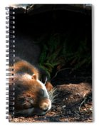 Hit The Otter Snooze Spiral Notebook