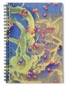 Hiv Viruses Spiral Notebook