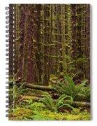 Hoh Rainforest Spiral Notebook