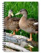 Hokey-pokey Spiral Notebook