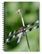 Holding To The Stem  Spiral Notebook