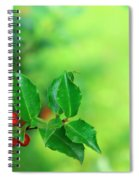 Holly Branch Spiral Notebook