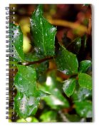 Holly Daze Dew Drops Spiral Notebook