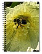 Hollyhock Collecter Spiral Notebook