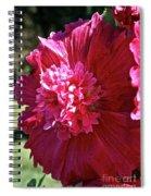 Hollyhock Highlights Spiral Notebook