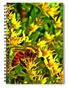 Honey Bee And Sedum  Spiral Notebook