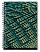 Honey Bee Leg, Sem Spiral Notebook