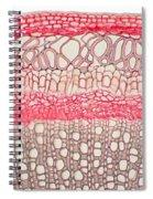 Honeysuckle Stem Spiral Notebook