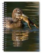 Hooded Merganser And Bullfrog Spiral Notebook