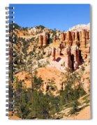 Hoodoo City Spiral Notebook