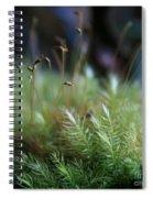 Hoomalumalu Kuhiwa Synchronicity Spiral Notebook