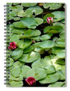 Hop To It Spiral Notebook