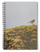Hopping Blue Bird Spiral Notebook