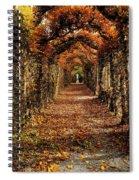 Hornbeam Alles, Birr Castle, Co Offaly Spiral Notebook