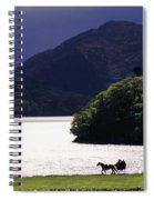 Horse And Buggy By Waterfront Spiral Notebook