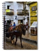 Horse And Buggy In Old Cartagena Colombia Spiral Notebook