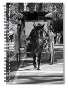 Horse And Buggy Spiral Notebook