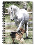 Horse And Dog Play Spiral Notebook