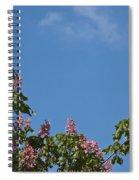 Horse Chestnut Spiral Notebook