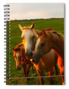 Horse Family Soft N Sweet Spiral Notebook