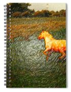 Horse Frolicking Spiral Notebook