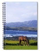 Horse Grazing In A Field, Beara Spiral Notebook