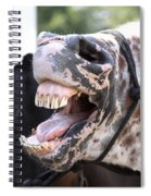 Horse Humor Spiral Notebook
