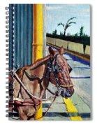 Horse In Malate Spiral Notebook