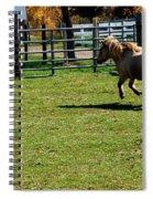 Horse Jump Spiral Notebook