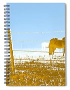Horse Pasture Revblue Spiral Notebook