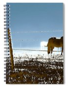 Horse Pasture Revdkblue Spiral Notebook