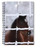 Horse Viewed Through Frost Covered Wire Fence Spiral Notebook