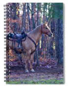 Horse Waiting For Rider Spiral Notebook