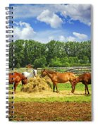 Horses At The Ranch Spiral Notebook