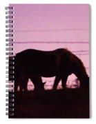 Horses Grazing At Dawn  Spiral Notebook