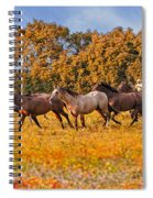 Horses Running Free Spiral Notebook