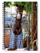 Horsing Around Spiral Notebook