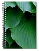 Hosta Green Spiral Notebook
