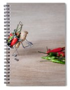 Hot Delivery 02 Spiral Notebook