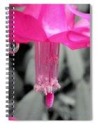 Hot Pink Cactus Spiral Notebook