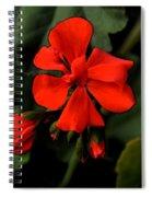 Hot Red Spiral Notebook