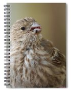 House Finch Profile Spiral Notebook
