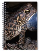 Houston Toad Spiral Notebook