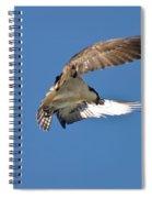 Hover Mode Spiral Notebook
