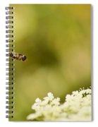 Hovering Over Spiral Notebook