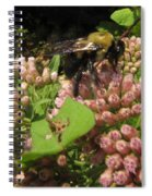 Huge Bumble Bee Spiral Notebook