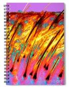 Human Scalp Spiral Notebook