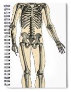 Human Skeleton Spiral Notebook