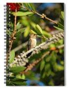 Hummer Hang-out Spiral Notebook