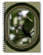 Hummingbird - Card - Glint Of The Eye Spiral Notebook